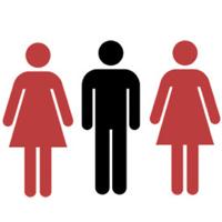David's polygamy